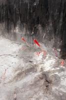 http://drapeaumartin.com/files/gimgs/th-52_dynamites.jpg